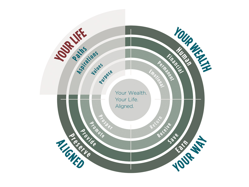 Wealth Alignment Information Graphic 5
